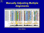 What is a Multiple Alignment?