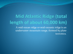 Mid Atlantic Ridge (total length of about 60000 km)