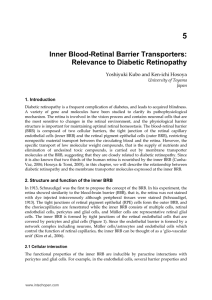 Inner Blood-Retinal Barrier Transporters: Relevance to