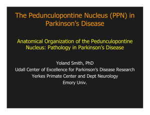 The Pedunculopontine Nucleus (PPN) in Parkinson`s Disease