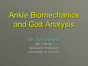 Talk 1 – Ankle Biomechanics and Gait Analysis