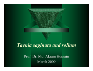 Taenia saginata and solium