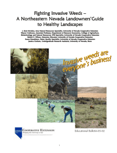 Fighting Invasive Weeds - A Northeastern Nevada Landowners