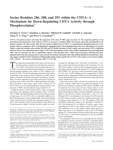 Serine Residues 286, 288, and 293 within the CIITA: A