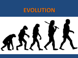 evolution - snavelybio