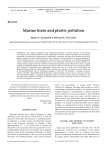Marine birds and plastic pollution