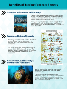 Benefits of Marine Protected Areas