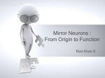 Mirror Neurons : From Origin to Function