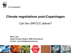 Current State of International Climate Negotiations