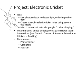 Cricket_project_brl4..