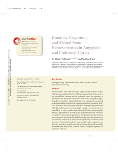 Emotion, Cognition, and Mental State Representation in Amygdala