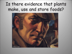 L.OL.07.63 Evidence that Plants make, use and store Food