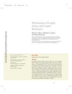 Mechanisms of Leptin Action and Leptin Resistance