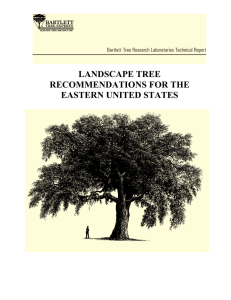 landscape tree recommendations for the