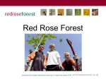 Red Rose Forest - Greater Manchester`s Community Forest