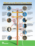 What`s on an Electric Power Pole?