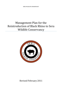 Management Plan for the Reintroduction of Black Rhino to Sera