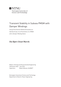 Transient Stability in Subsea PMSM with Damper Windings