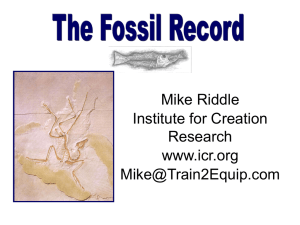 19-Fossil Record (Mike Riddle CTI