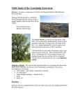 Field Study Of The Grasslands Ecosytem Expectations