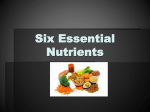 Six-Essential-Nutrients-PPT