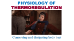 Thermoregulation (for review)