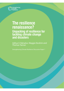 The resilience renaissance? Unpacking of resilience for tackling