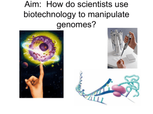 Aim: How do scientists use biotechnology to manipulate genomes?