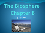 What is the Biosphere?