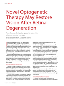 Novel optogenetic Therapy May Restore Vision After Retinal