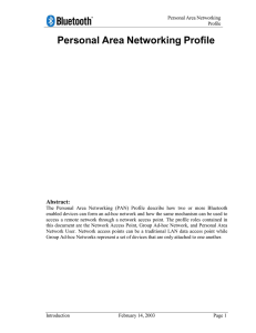 Personal Area Networking Bluetooth Profile