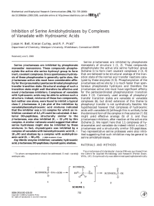 Inhibition of Serine Amidohydrolases by Complexes of Vanadate
