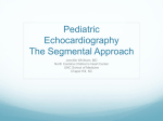 Pediatric Echocardiography The Segmental Approach