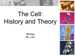 6-cell-theory-15-16