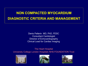 non compacted myocardium diagnostic criteria and management