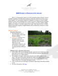 2009 Habitat Program Summary - Conserve Wildlife Foundation