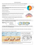 Plate Tectonics Review The rock at the Earth`s surface forms a