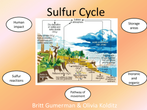 Sulfur Cycle - Walshearthsciences