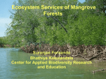 Ecosystem Services of Mangrove Forests