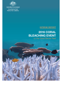 Interim report on 2016 coral bleaching event in GBRMP