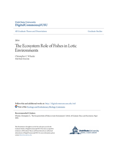 The Ecosystem Role of Fishes in Lotic Environments