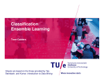 Classification Ensemble Learning