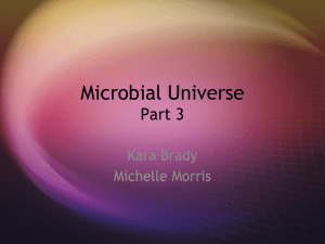 Microbial Universe Part 3