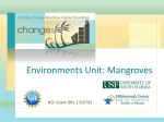 Mangroves PPT