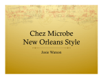 Chez Microbe New Orleans Style
