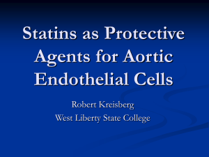 Statins as protective agents for aortic endothelial cells - wv