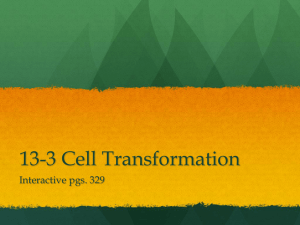 13-3 Cell Transformation