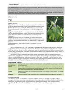 Weed Control Handbook - Weed Research and Information Center