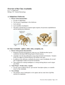 Overview of the Class Arachnida