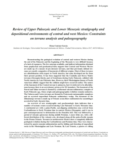 Review of Upper Paleozoic and Lower Mesozoic stratigraphy and